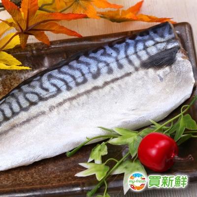 【買新鮮】頂級挪威鯖魚40片組(200g±10%/片)
