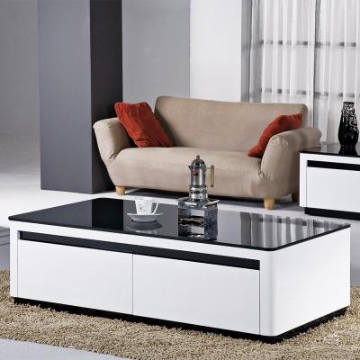 Boden-韋斯4.3尺時尚黑白二抽大茶几-130x70x41cm