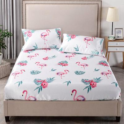 Grace Life 熱帶雨林 加大可水洗涼感絲床包三件組