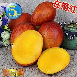 【風之果】 寶島級愛文芒果禮盒5台斤1箱