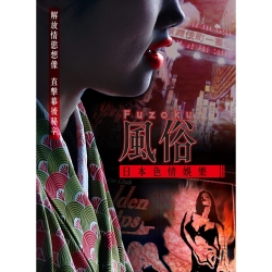 風俗:日本色情娛樂 DVD