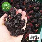 老農手摘 天然野生桑葚果-產地直銷(500公克x15包)