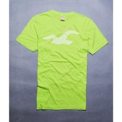 HOLLISTER Co. 大海鷗休閒圓領短袖T恤-綠