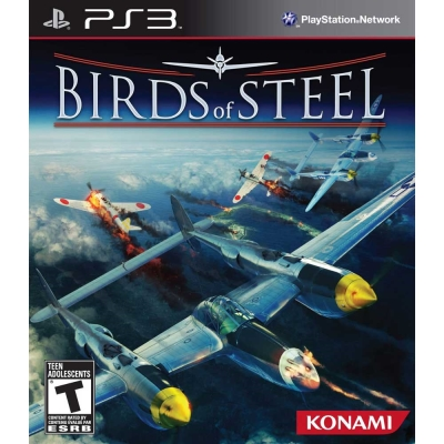 鋼鐵之翼 Birds of Steel -PS3英文美版
