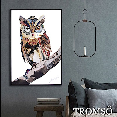TROMSO北歐時代風尚有框畫-奇幻貓頭鷹40X60CM