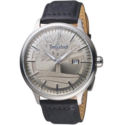 Timberland日間燦爛時尚腕錶(TBL.15260JS/11)-45mm/銀x黑