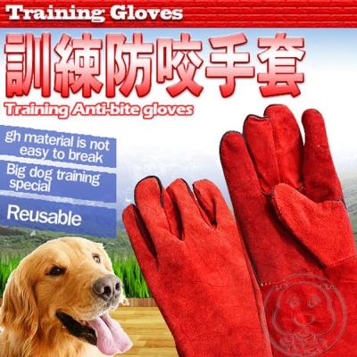 獸醫│美容師│教育員專用訓練加厚防咬皮手袖套 (60cm×19cm)