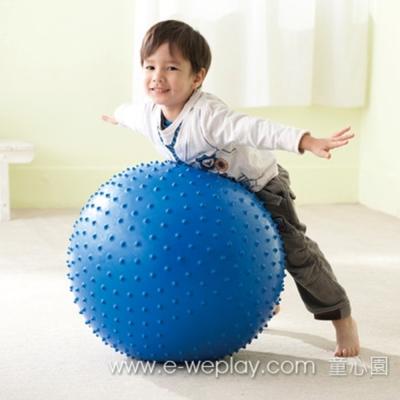 Weplay身體潛能開發系列【創意互動】彈力觸覺球(直徑75cm) ATG-KB0306