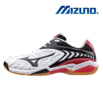 Mizuno WAVE FANG SS2 羽球男鞋 71GA171209