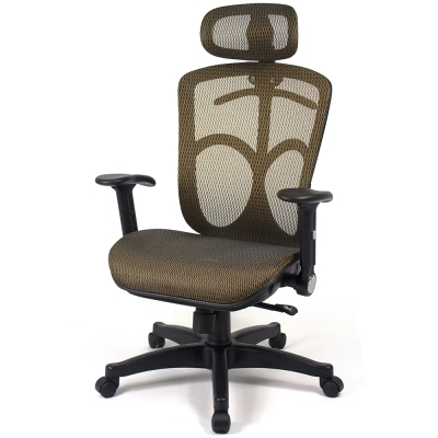 【aaronation】愛倫國度 - 第二代頭枕式電腦椅(LD338-金)
