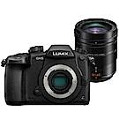 Panasonic LUMIX GH5+Leica 12-60mm II 單鏡組*(平輸)