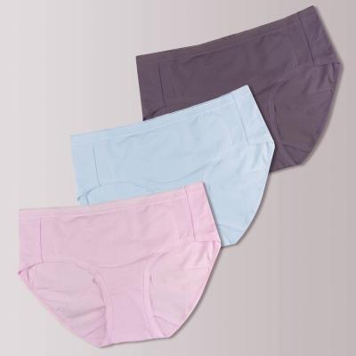 蕾黛絲-伴你一生(精梳棉)棉褲三件包中腰內褲M-EEL 粉/藍/藕