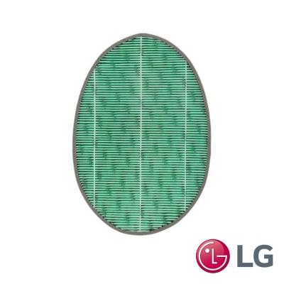 LG樂金 AAFTWH101 抗敏 HEPA濾網 (PS-W309 專用)