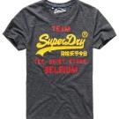 SUPERDRY 極度乾燥 短袖 文字T恤 灰色 0022