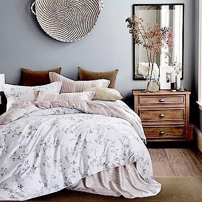Lily Royal 天絲 特大-六件式兩用被床罩組 織花