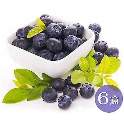 【天天果園】智利空運新鮮藍莓6盒(每盒125g±10%)