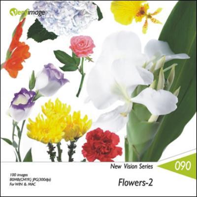 新視界系列90-花卉-2