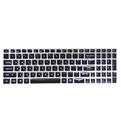 EZstick ASUS X550V X550VQ 專用 中文印刷鍵盤膜 (台灣專用)