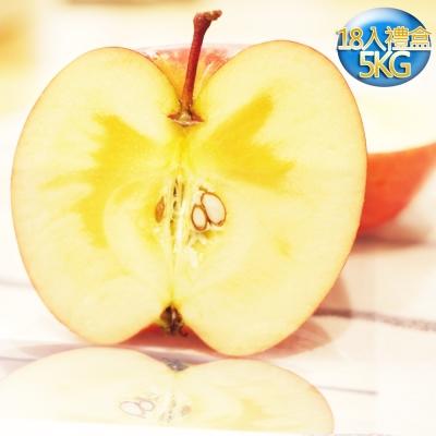 果之家 特選日本青森無套袋蜜蘋果禮盒18顆入(5公斤)(春節禮盒)