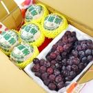 鮮果日誌 - 清涼健康禮盒組(東勢台灣梨5入+巨峰葡萄2.5台斤)