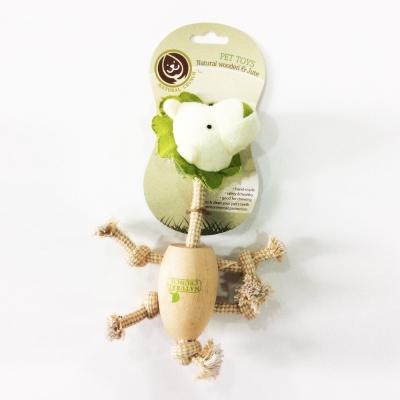 NaturalCrunch 耐咬木頭潔牙玩具-獅子