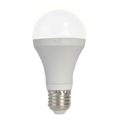 日毓光電 太陽神系(銀) 12W 冷白/暖黃光LED燈泡 6顆
