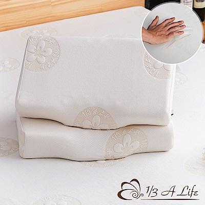 1/3 A LIFE 鑫妮-科技涼感按摩側睡記憶枕-(天后枕)(2入)