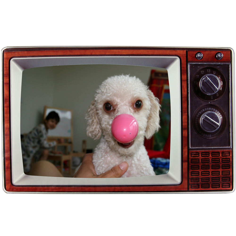 《KIKKERLAND》TV 偽電視4x6相框(深咖)