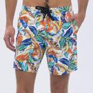 澳洲Sunseeker泳裝時尚男士快乾衝浪泳褲-叢林白