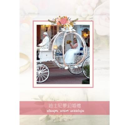 迪士尼夢幻婚禮 DVD