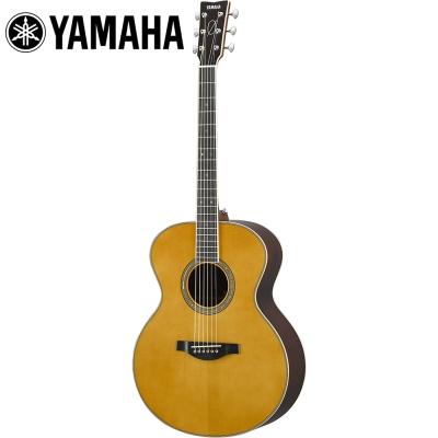 YAMAHA LJ16BC 電木吉他 全單板 附贈原廠硬盒