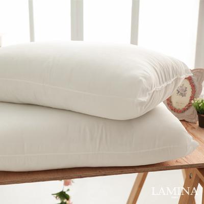 LAMINA  防蹣抗菌健康枕-2入