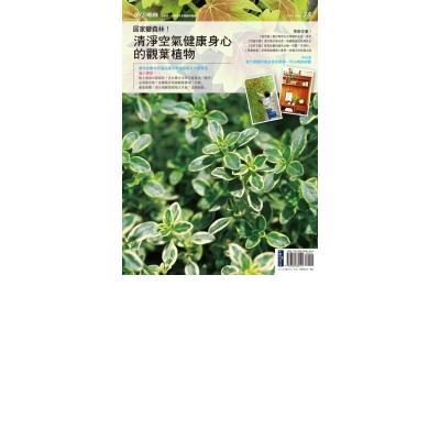 花草遊戲No.74 居家變森林!清淨空氣健康身心的觀葉植物