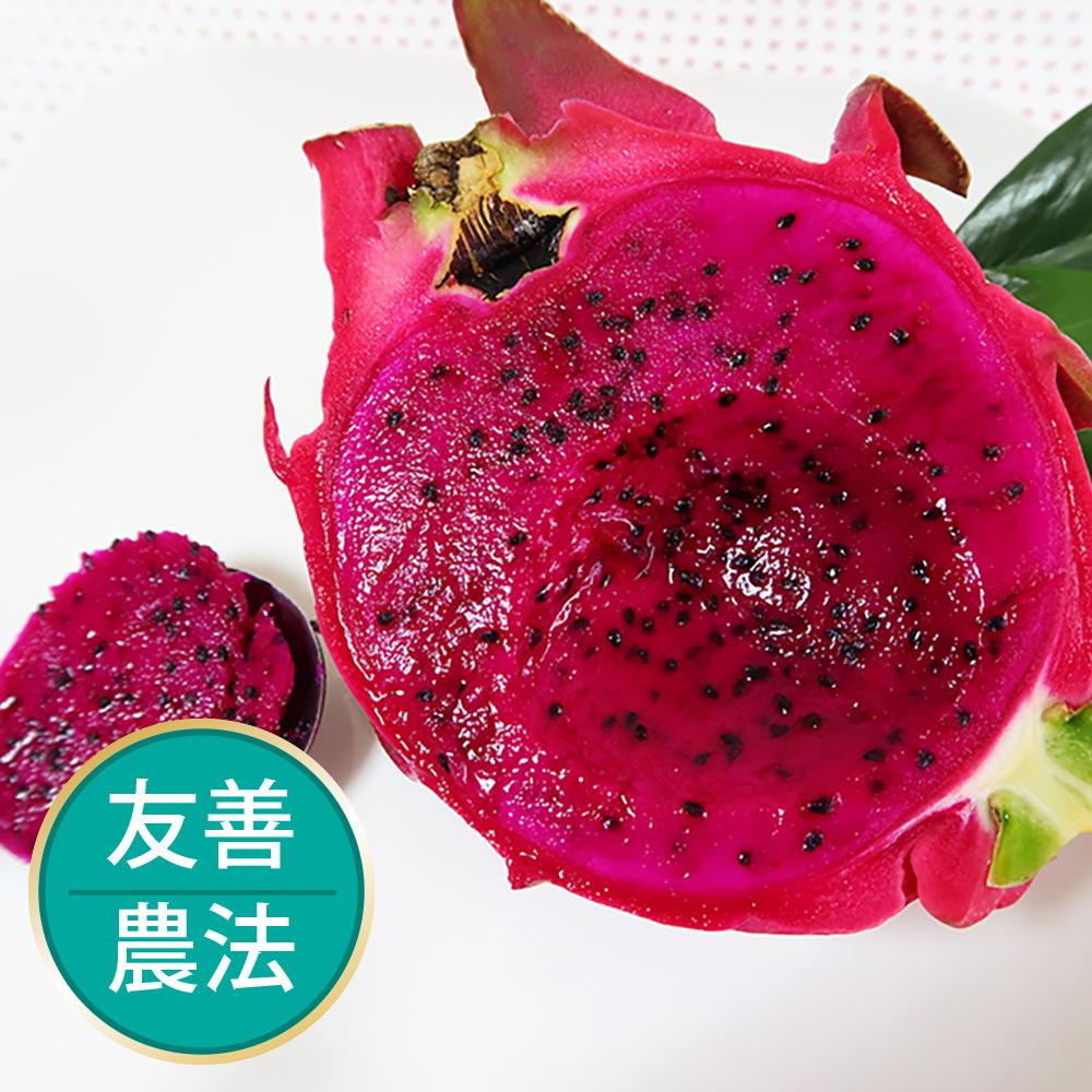 【果物配-任選799免運】紅肉火龍果.友善農法(700g/1~2顆)