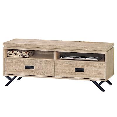 品家居 洛普4尺木紋二抽長櫃/電視櫃(二色可選)-120x39.5x52.5cm免組