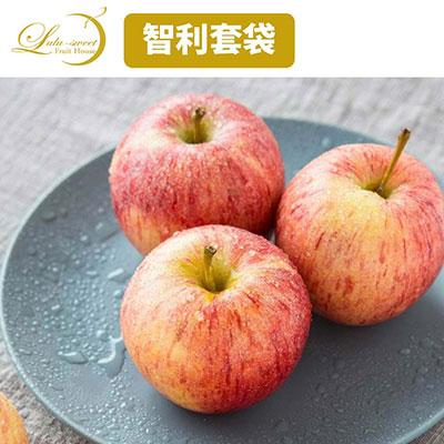 【甜露露】無蠟智利套袋蘋果3XL 8顆入禮盒(2.8kg±10%)
