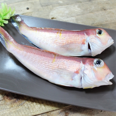 魚博士-魚霸 野生現撈馬頭魚6尾組(150g~200g /入)