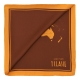 Alviero Martini 義大利地圖 經典地圖撞色絲巾(50X50)-棕色 product thumbnail 1