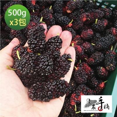 【老農手摘】天然野生桑葚果-產地直銷(500公克x3包)