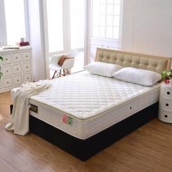 Ally愛麗 正三線乳膠-3M防潑水蜂巢獨立筒床墊-雙人5尺