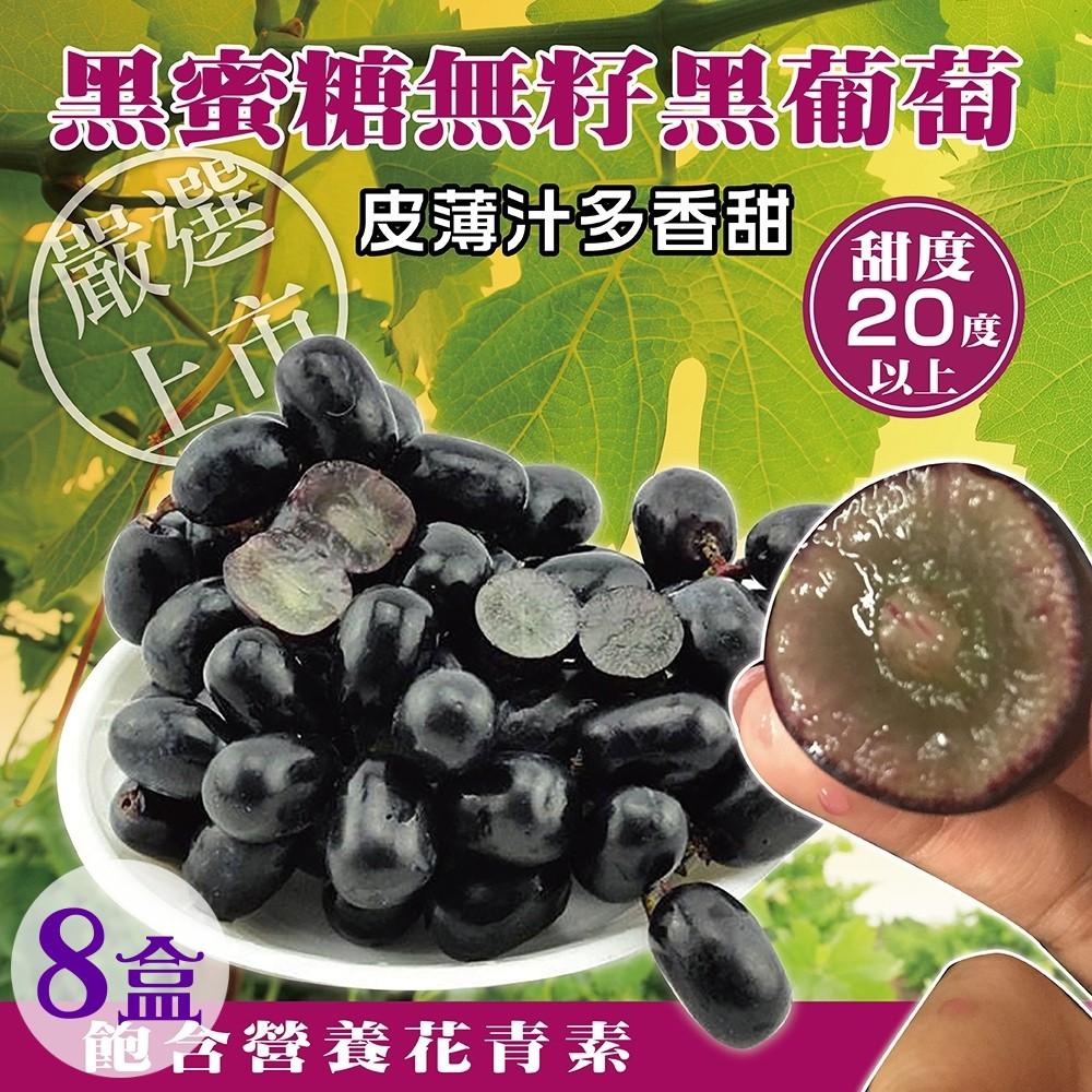 天天果園*智利黑蜜糖無籽黑葡萄(每盒500g±10%) x8盒