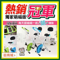 X-BIKE 晨昌 平板專用健身車