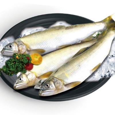 鮮選 台灣公香魚 (1000g±10%/盒/10隻)