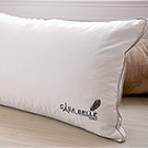法國Casa Belle 頂級北歐 98/2 羽絨天絲枕 二入