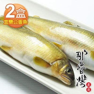 那魯灣 宜蘭特選香魚 2盒(10尾/1公斤/盒)