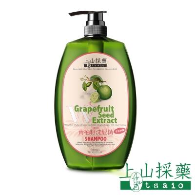 tsaio上山採藥-青柚籽純淨洗髮精1000ml