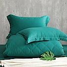 Cozy inn  100%萊賽爾天絲-海洋綠 四件式兩用被套床包組(加大)