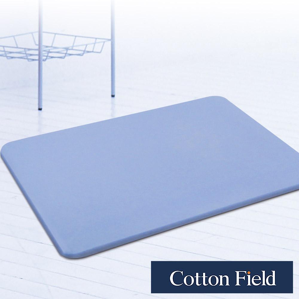 棉花田 原野 日本超人氣珪藻土吸水抗菌浴墊-粉藍色(35x45cm)