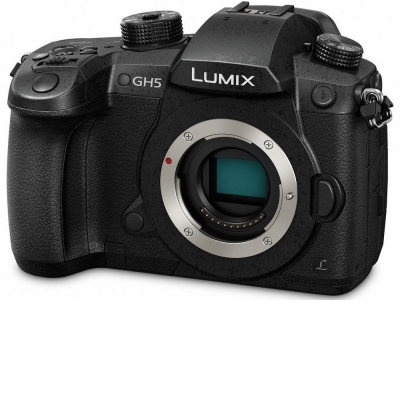Panasonic LUMIX DMC-GH5 單機身 (平輸中文)