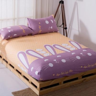 DON貝貝兔 雙人三件式蜜絲絨床包枕套組